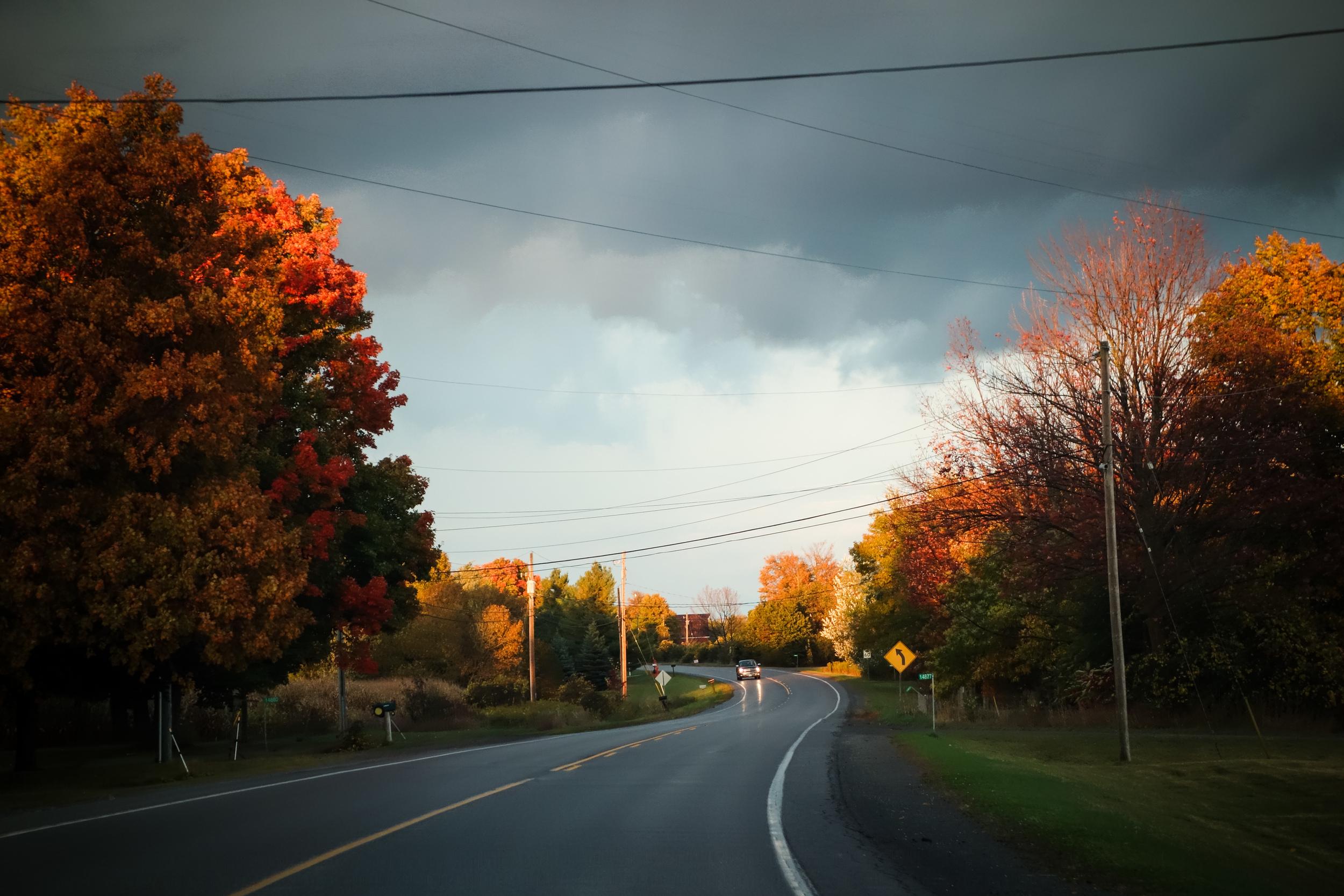 Prince Edward County-17.jpg