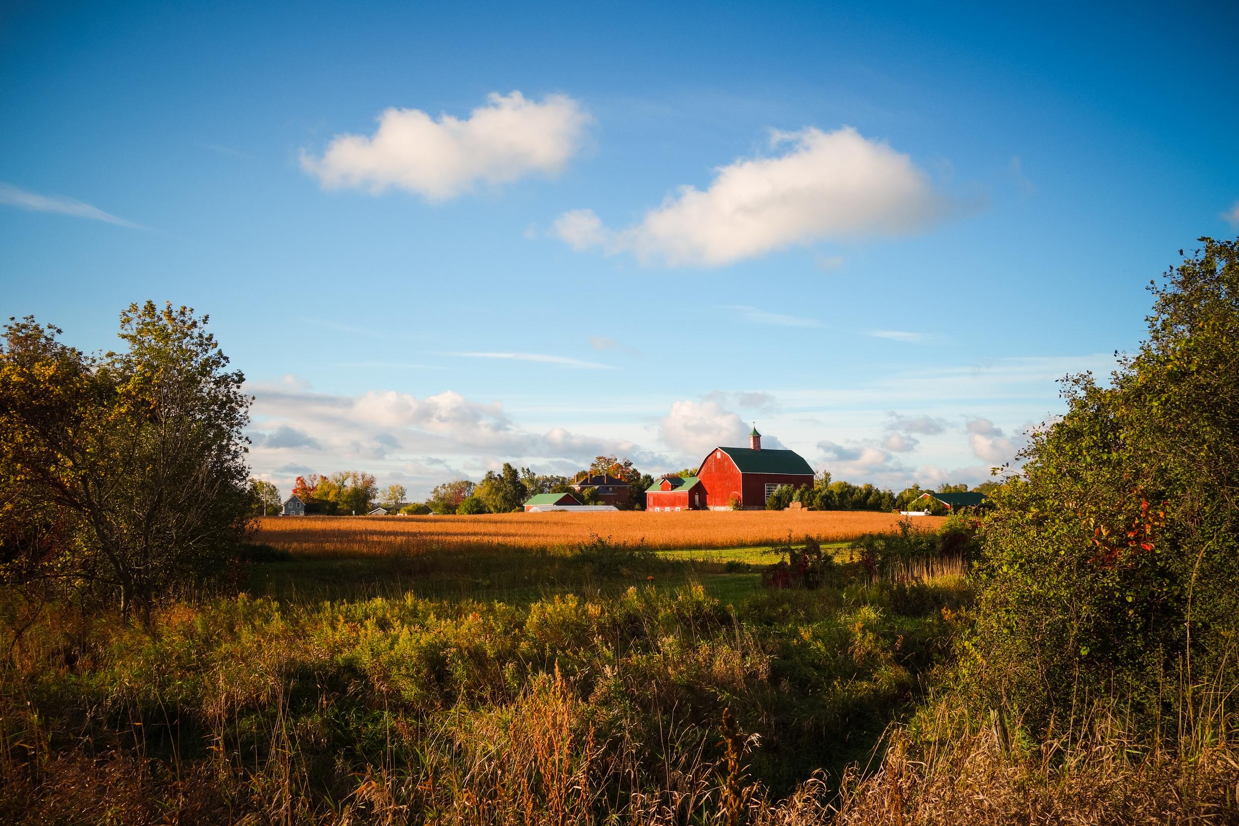 Prince Edward County-23.jpg