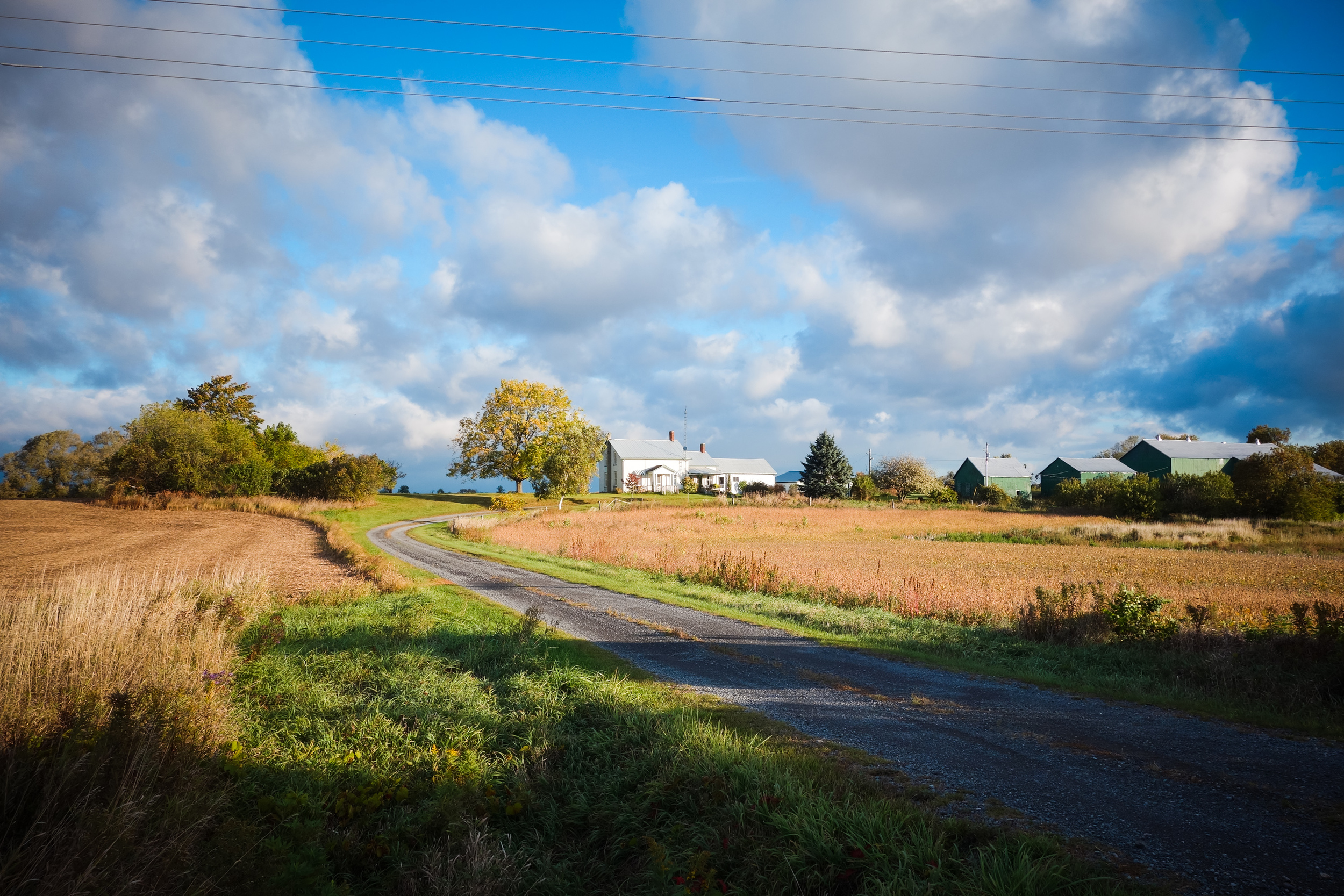 Prince Edward County-26.jpg