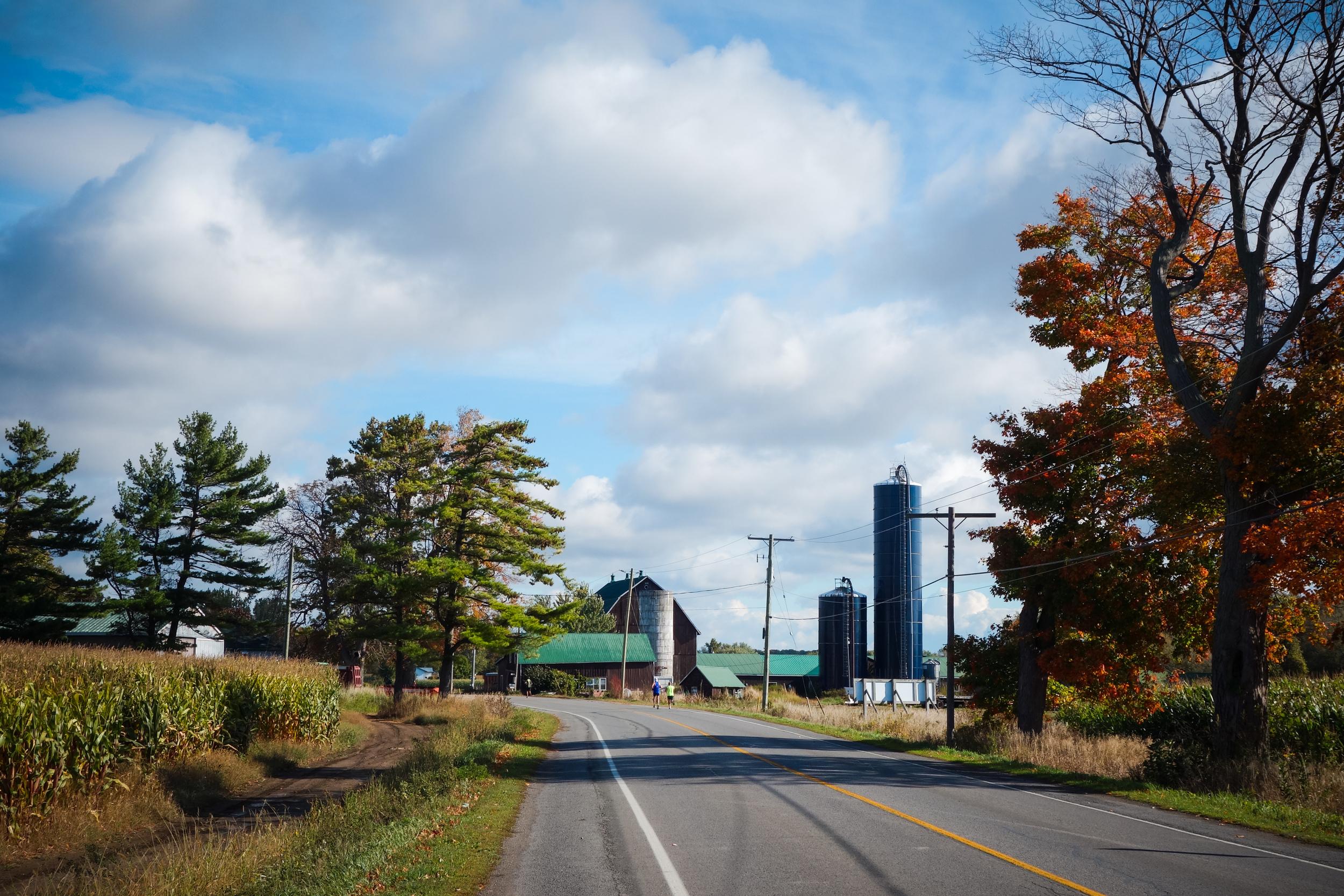 Prince Edward County-53.jpg
