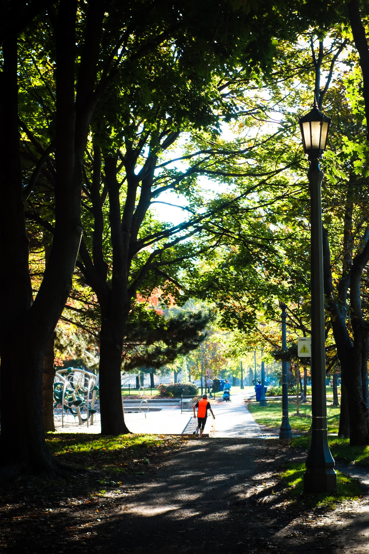 Toronto-Autumn-29.jpg