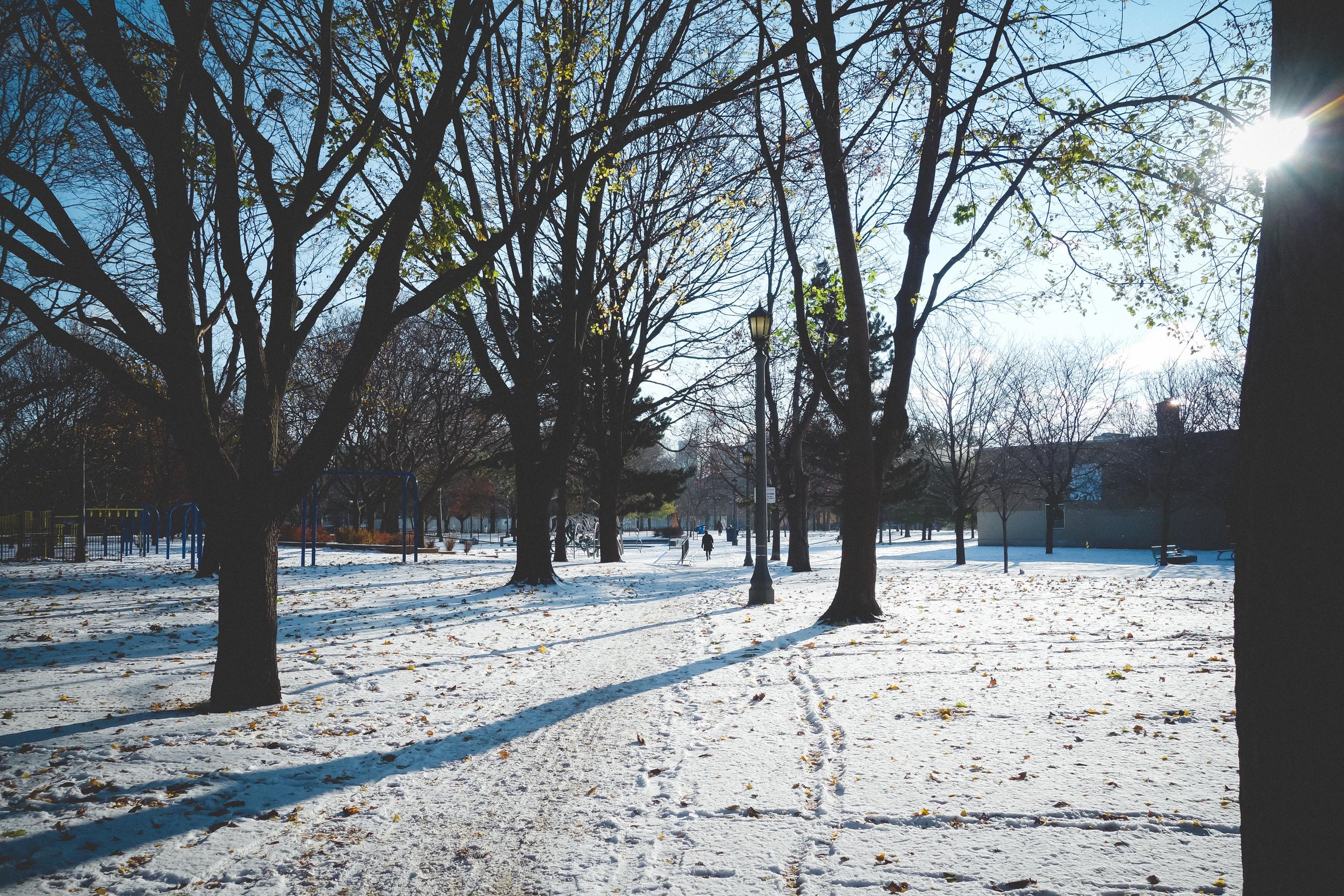 Winter-1.jpg