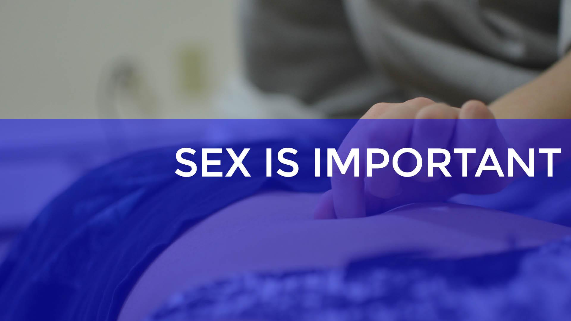 sex is important.jpg