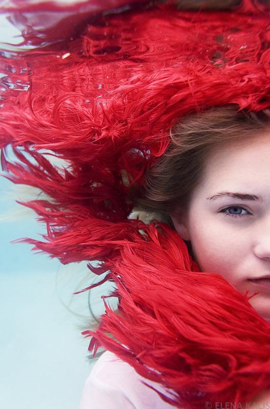 underwater_elena_kalis24.jpg