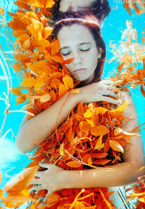 autumn_web.jpg