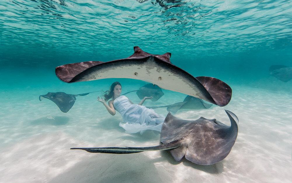ocean photographers