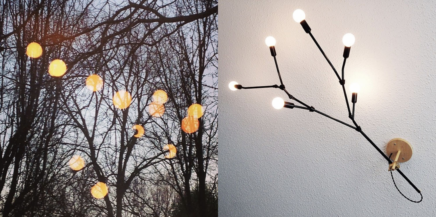 branch light.jpg