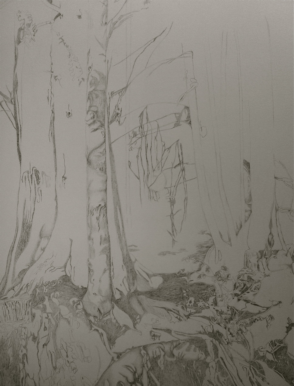 tree-sketch.jpg