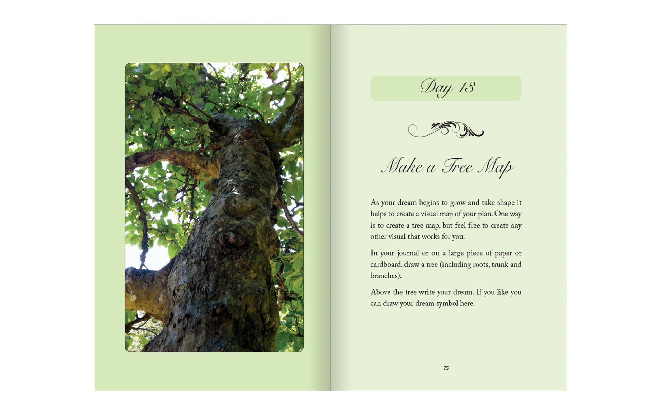 Little Book-fr-bk-web-day13.jpg