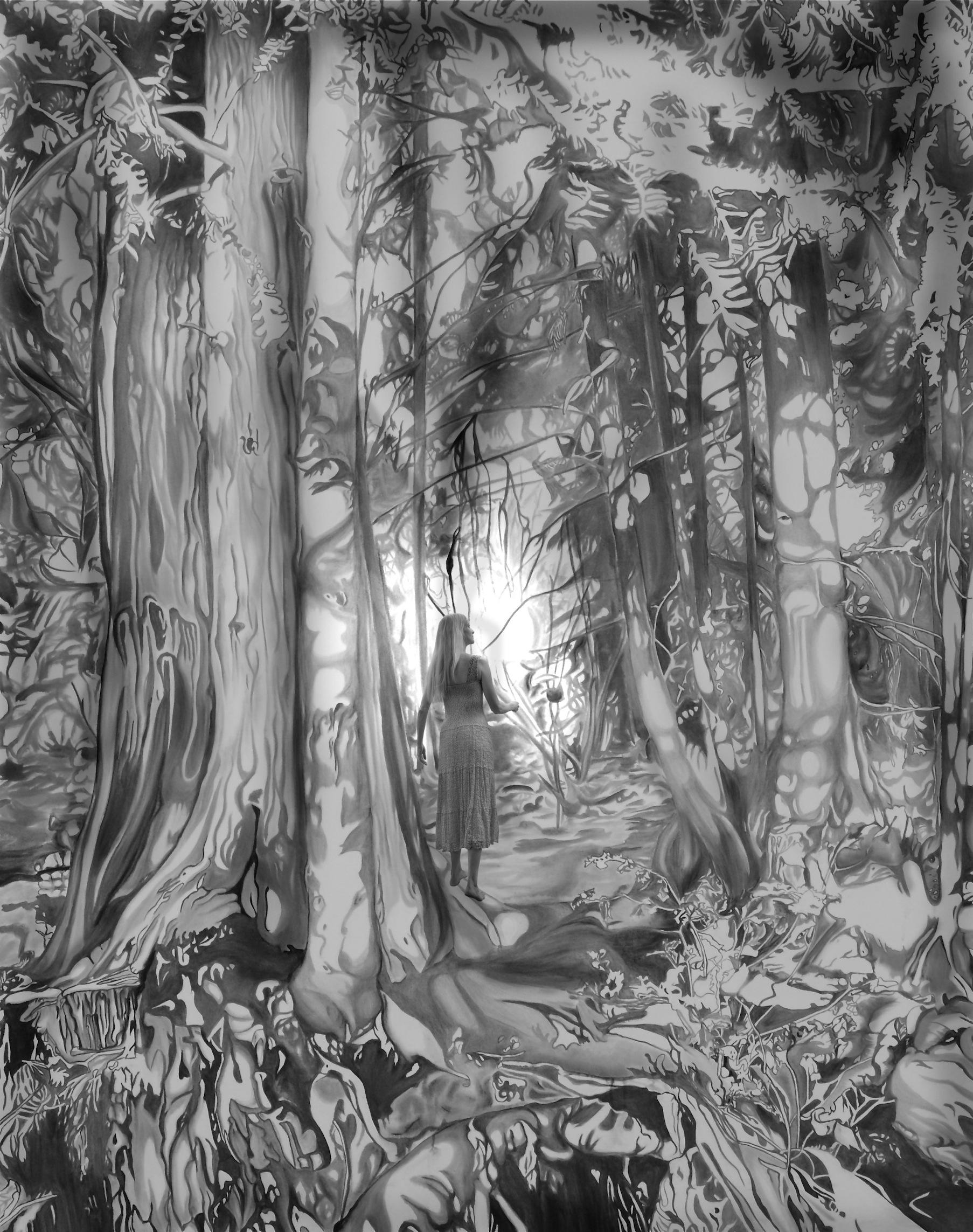 Dream Catcher Forest