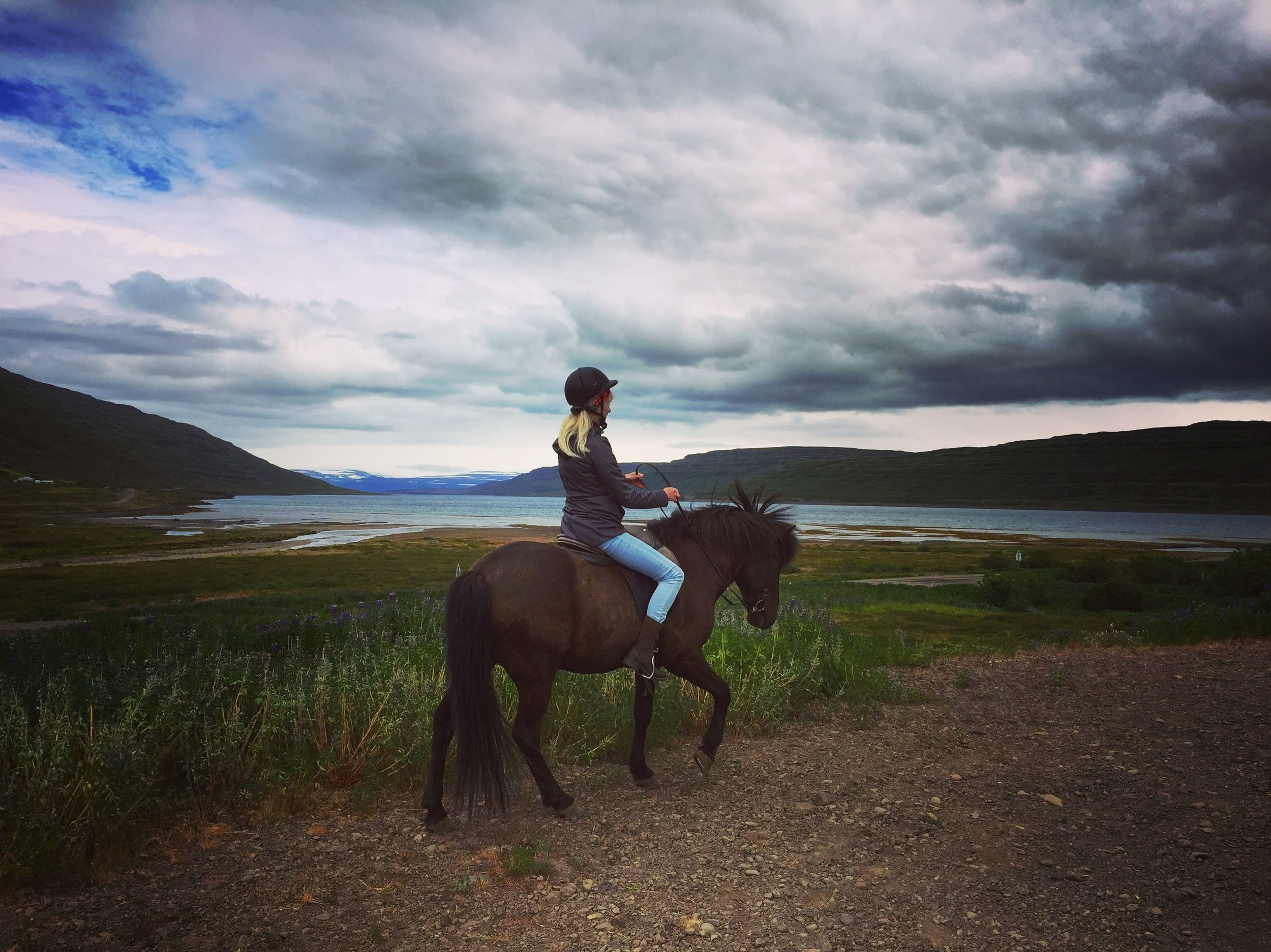 Anne of horse.jpg
