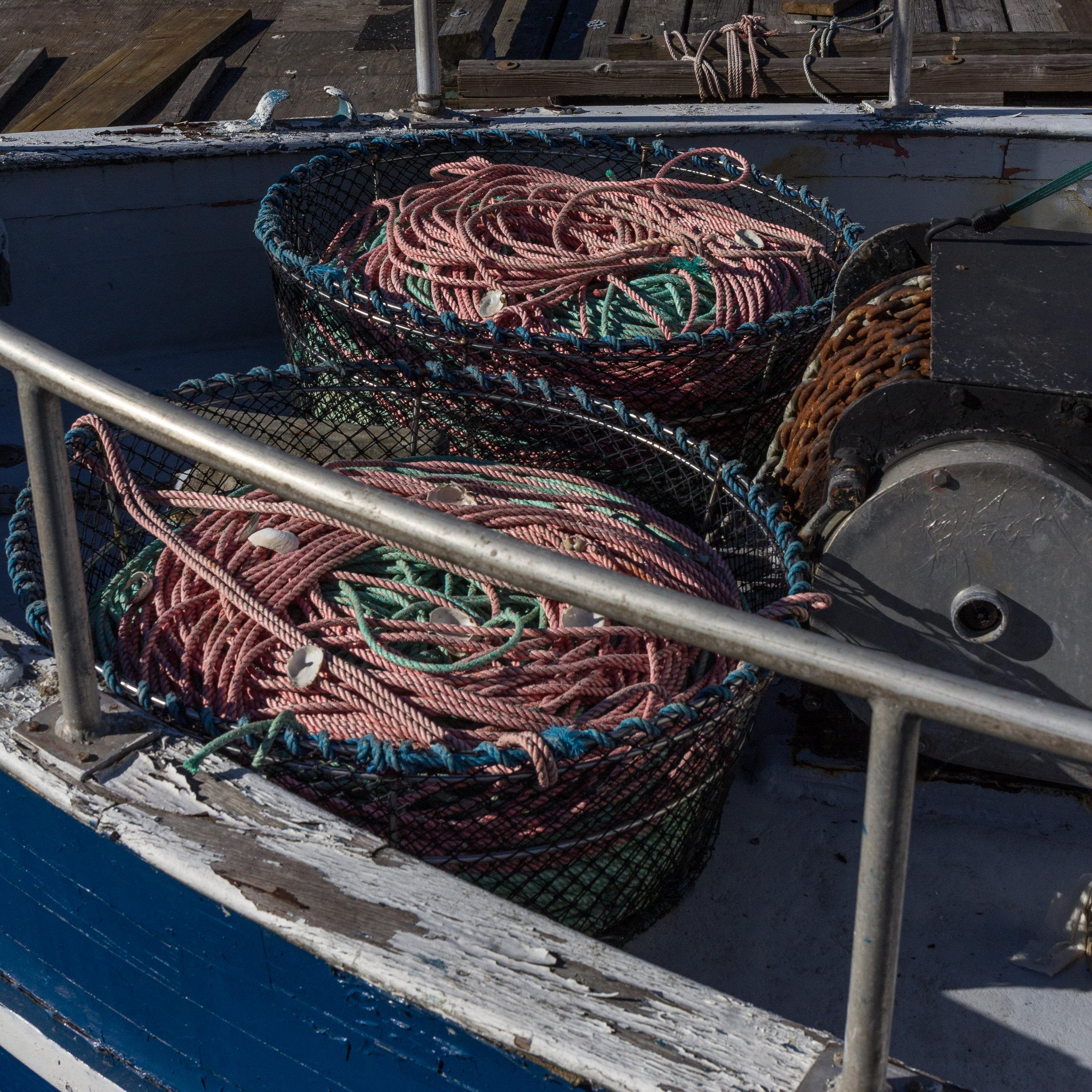 Salmon 2017-005.jpg