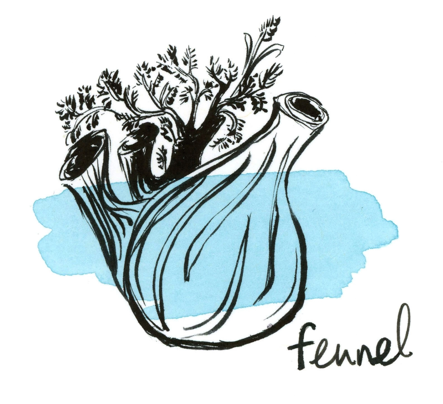 Winter_Salad_of_Fennel.jpg