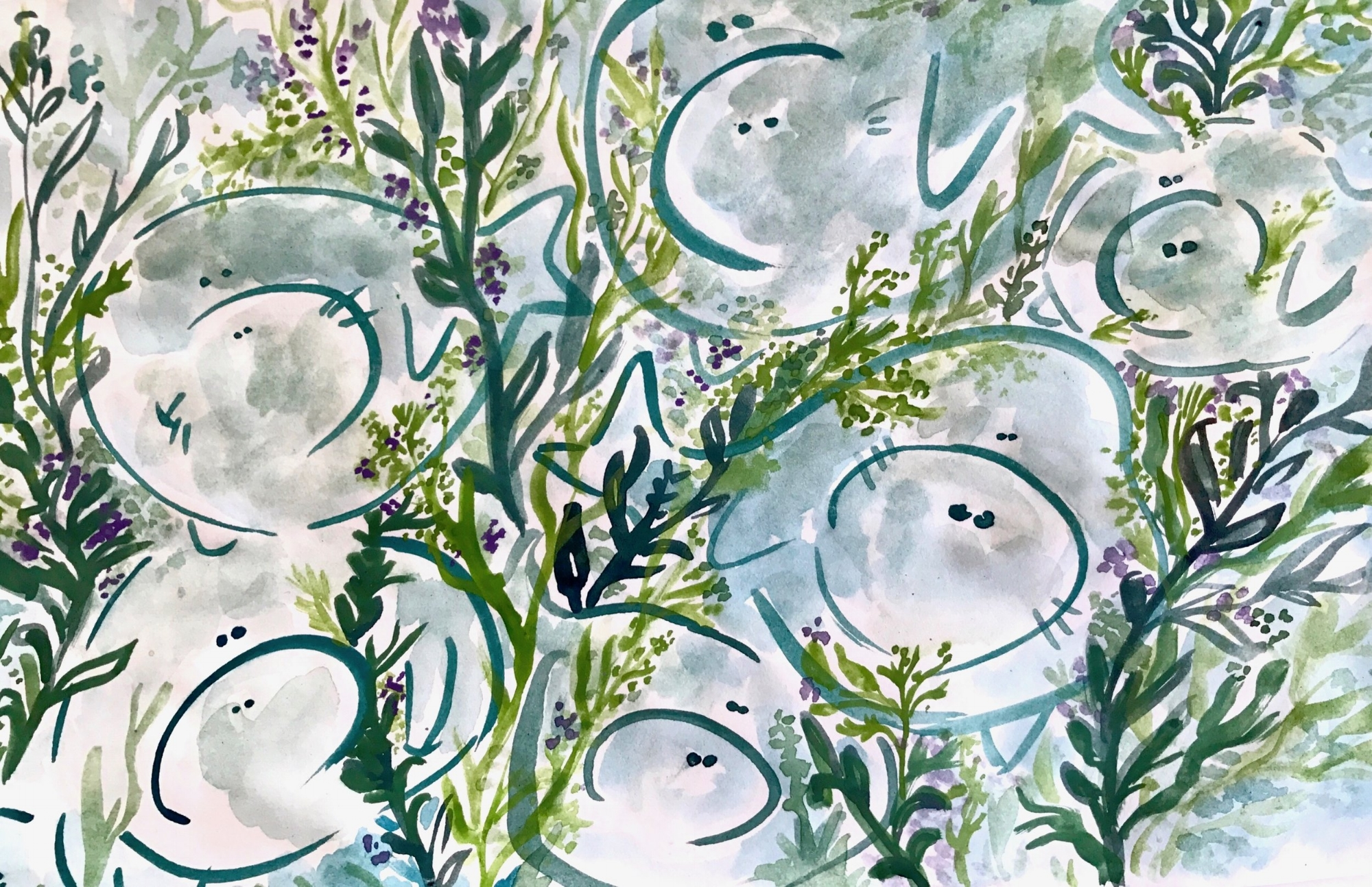 New collective noun: A plod of manatees