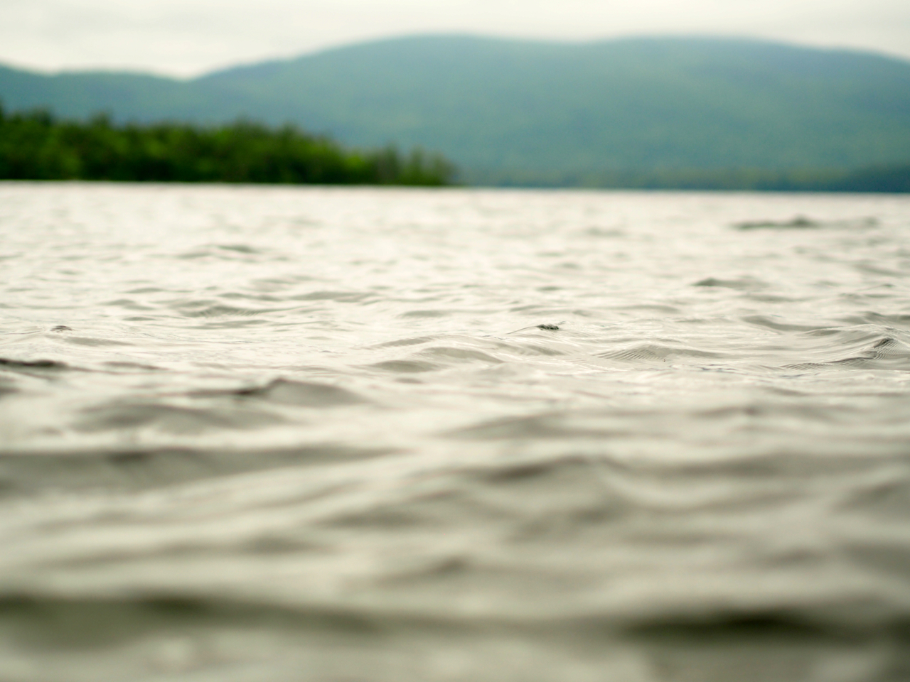 squam lake motion