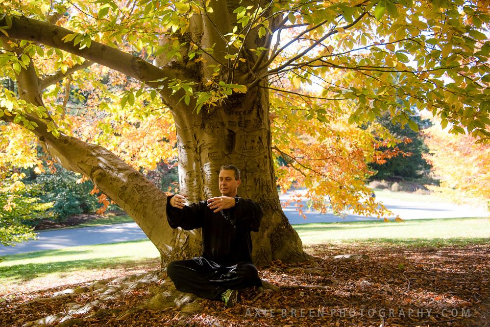 Embrace the Tree_Sitting.jpg