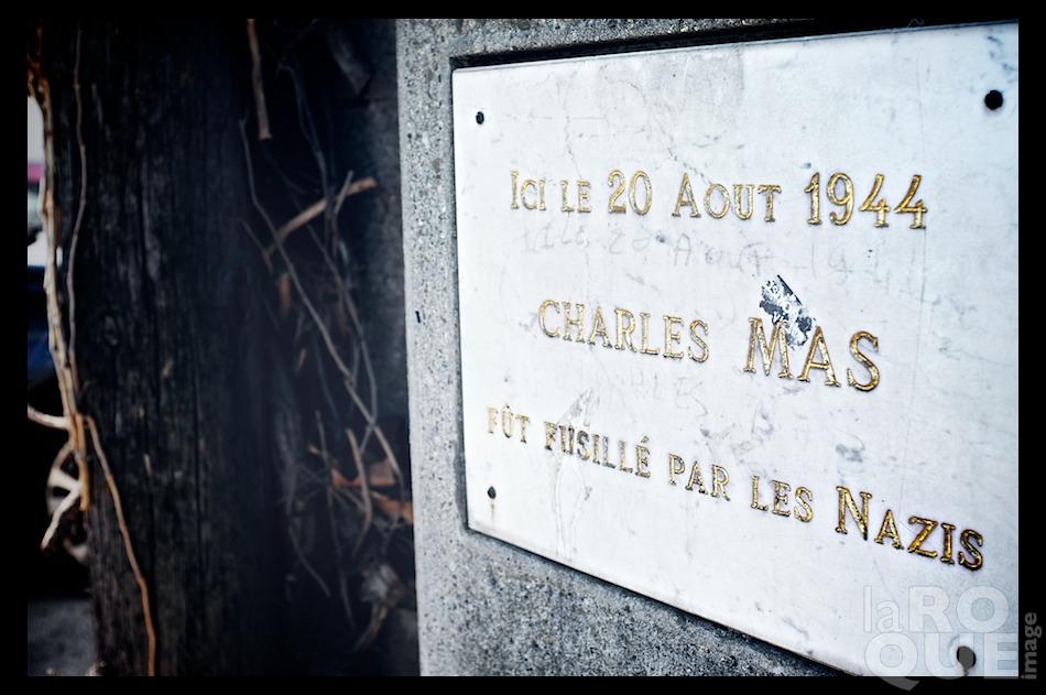 laROQUE_carcassonne20.jpg