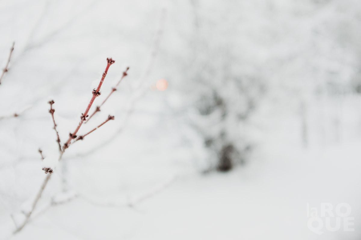 LAROQUE-snowblindness-03.jpg