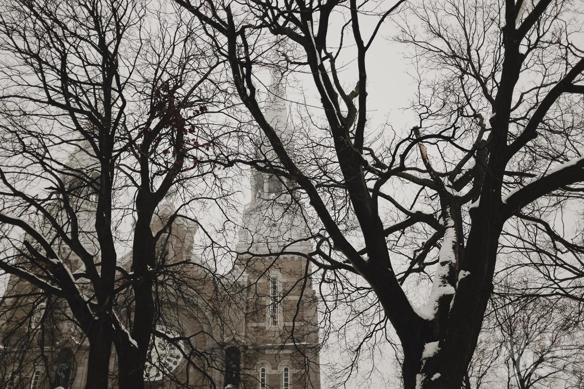 LAROQUE-snowblindness-06.jpg
