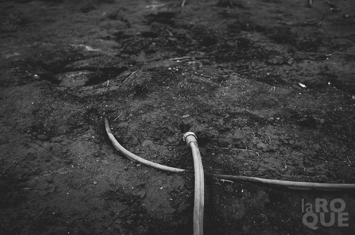 LAROQUE-unravelling-mono-01.jpg