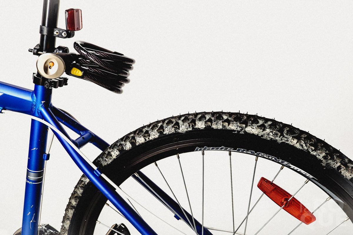 LAROQUE-greenery-bikes-avatars-06.jpg