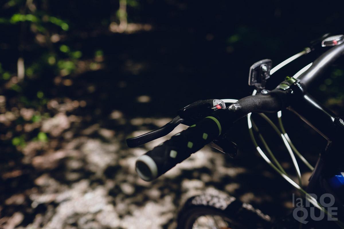 LAROQUE-greenery-bikes-avatars-12.jpg