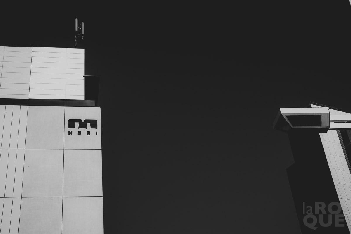 LAROQUE-tokyo-III-1-03.jpg