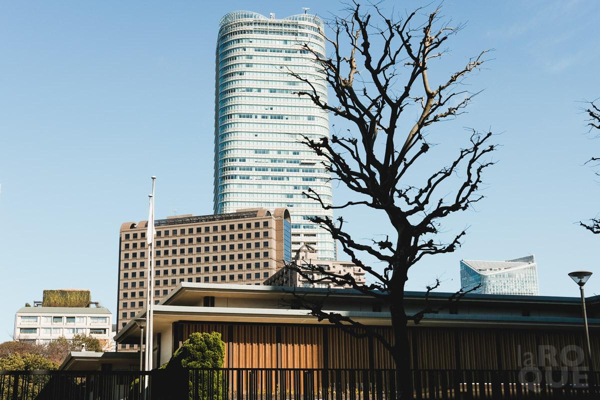 LAROQUE-tokyo-III-3-01.jpg