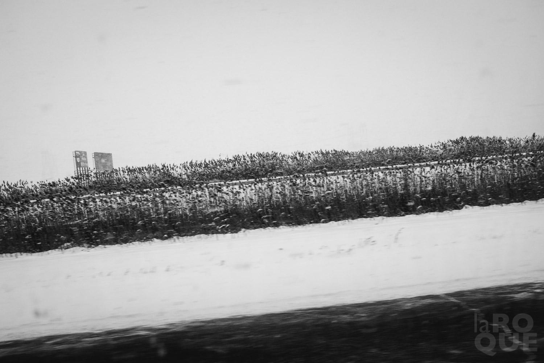 LAROQUE-ice-driving-02.jpg