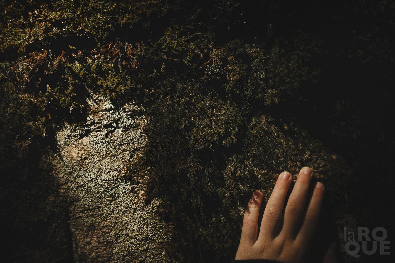 LAROQUE-wildlings5-05.jpg