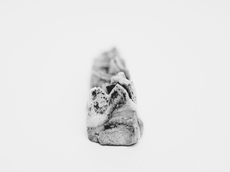 laROQUE-artifacts-006.jpg