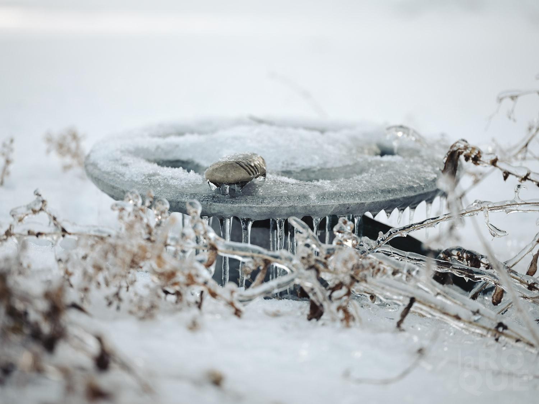 laROQUE-iceworld-003.jpg