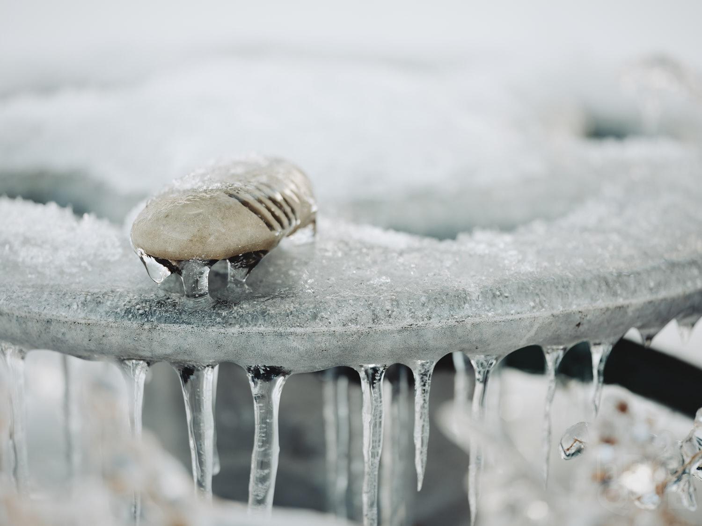 laROQUE-iceworld-004.jpg