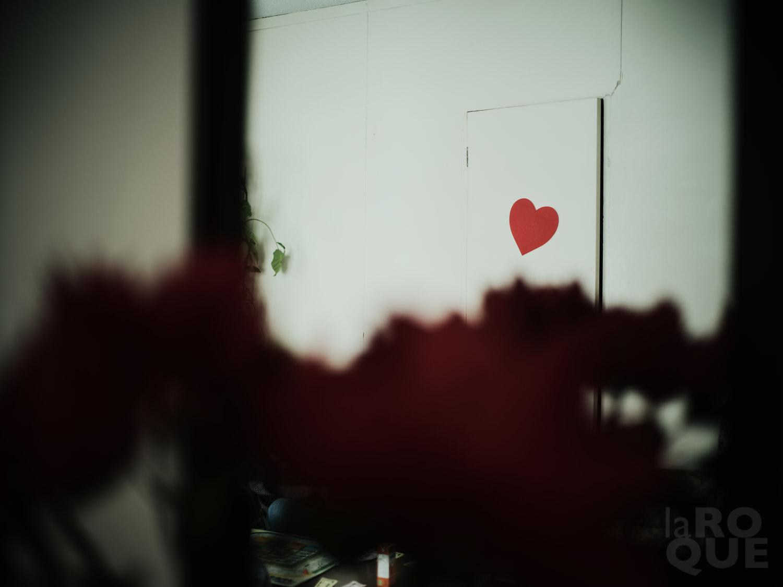 IMG_0329.JPEG