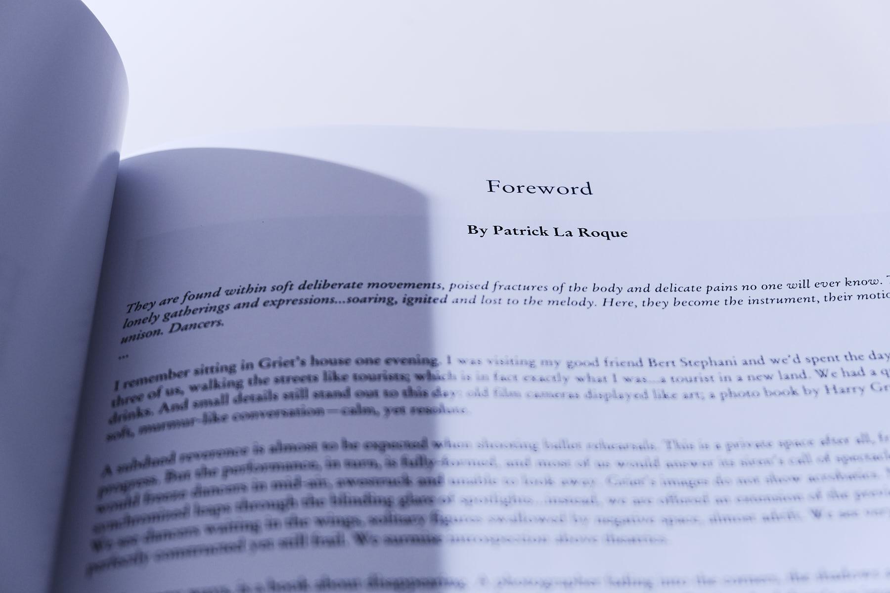 laROQUE-Griet's Book-007.jpg