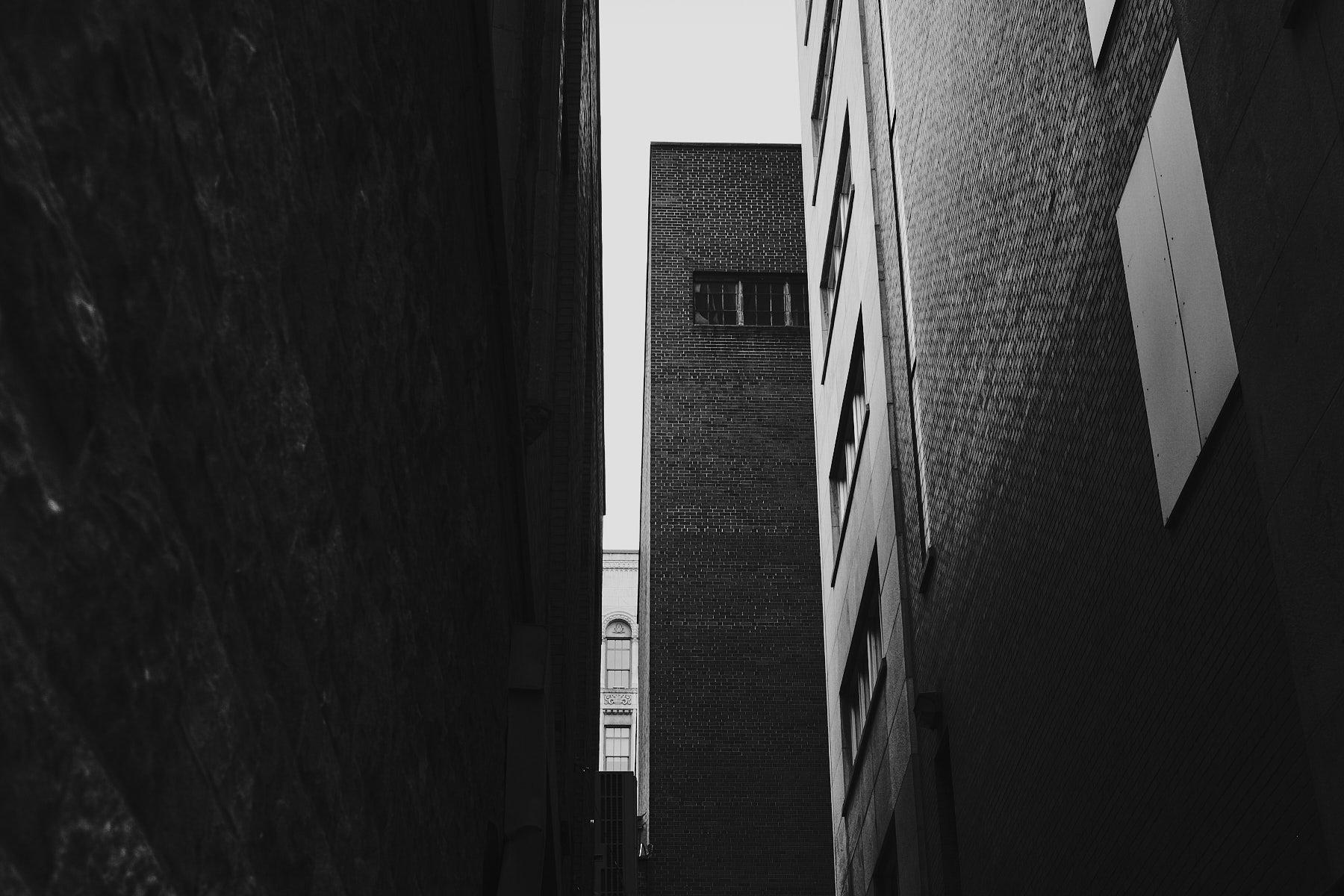 laROQUE-gray-quiet-010.jpg