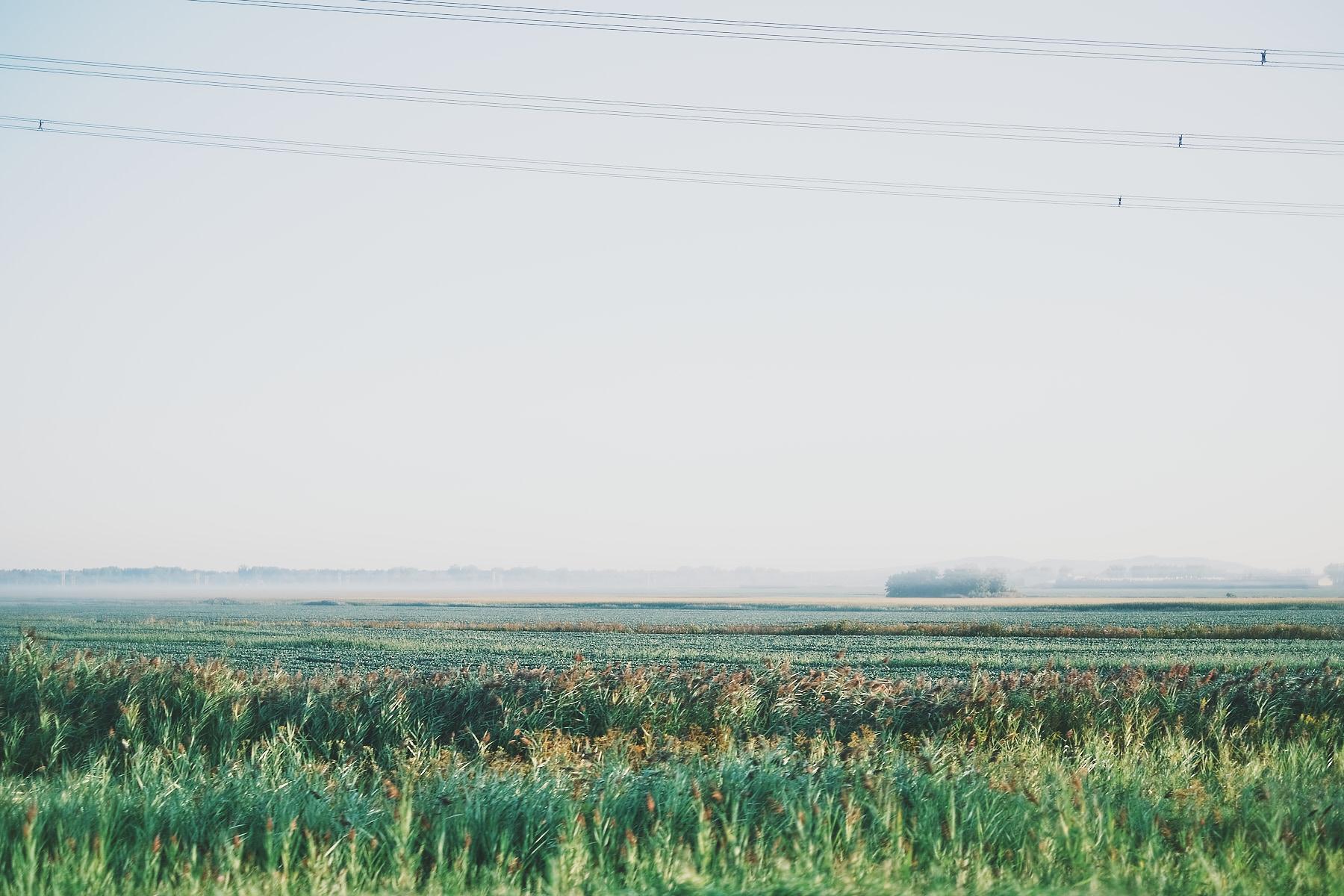 laROQUE-xpro3-BTS-002.jpg