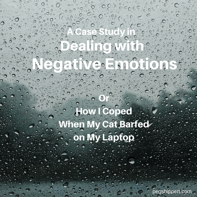 Dealing With Negative Emotions OR How I coped when my cat barfed on my laptop