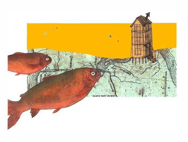 fish in landscape