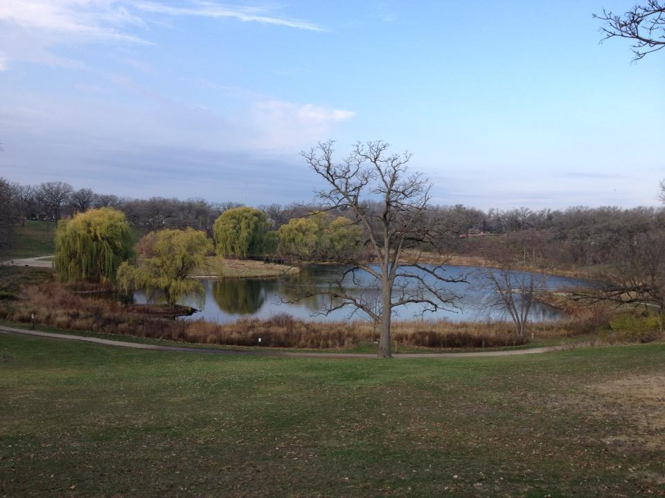 I had to stop at Mile 6.6 of my Long Run to enjoy this view of the Lake in Veterans Acres Park.