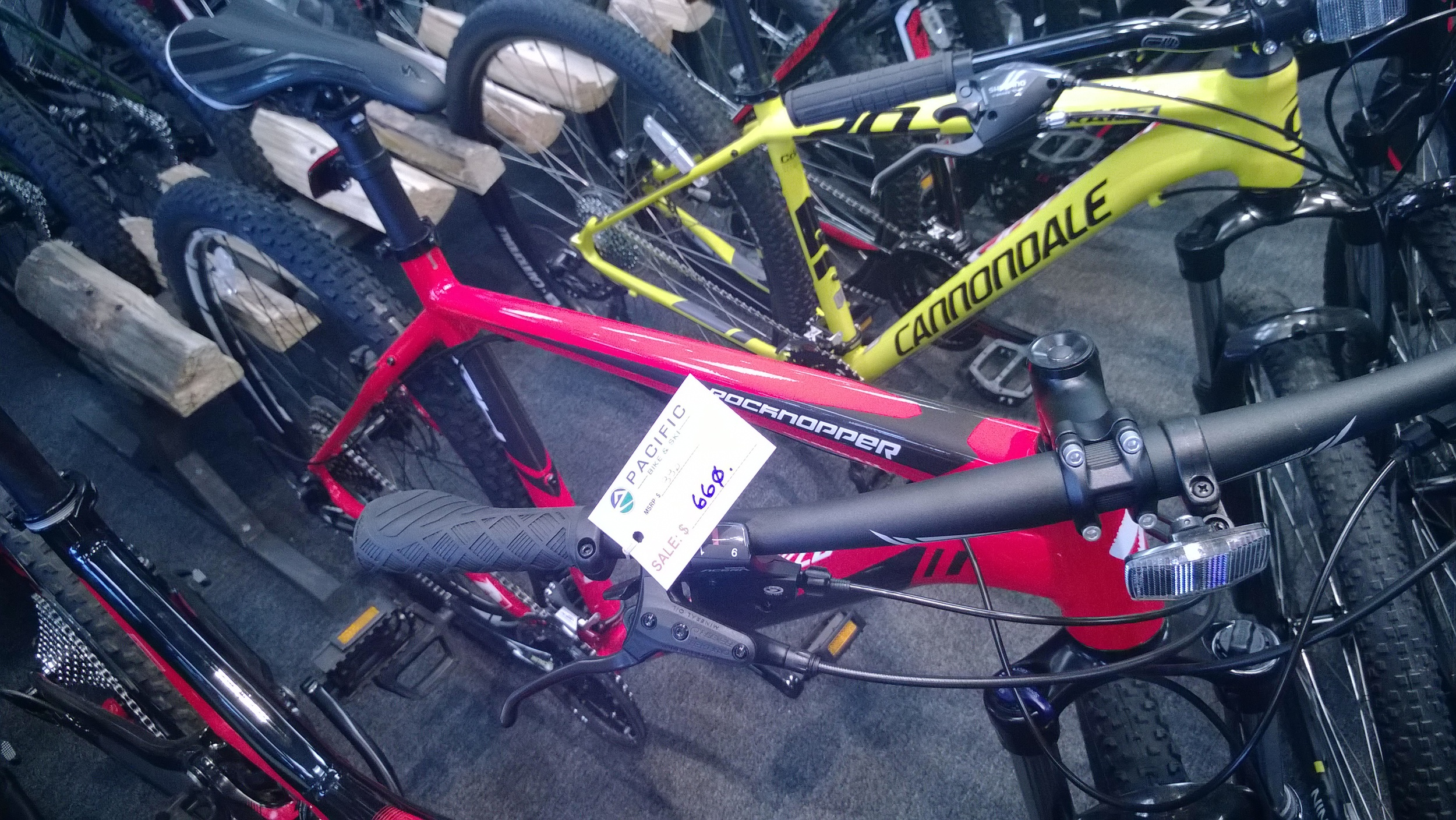 Specialized RockHopper 29 at Pacific Bike and Ski in Sammamish.