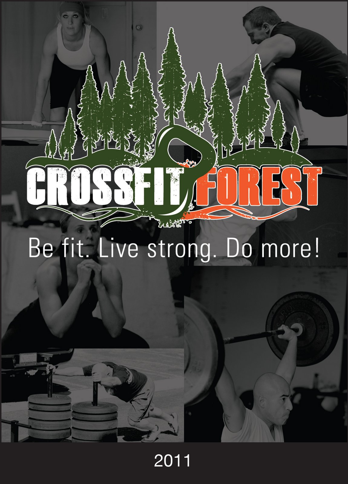 CrossFit_Forest_Flyer 2011cropped-1.jpg
