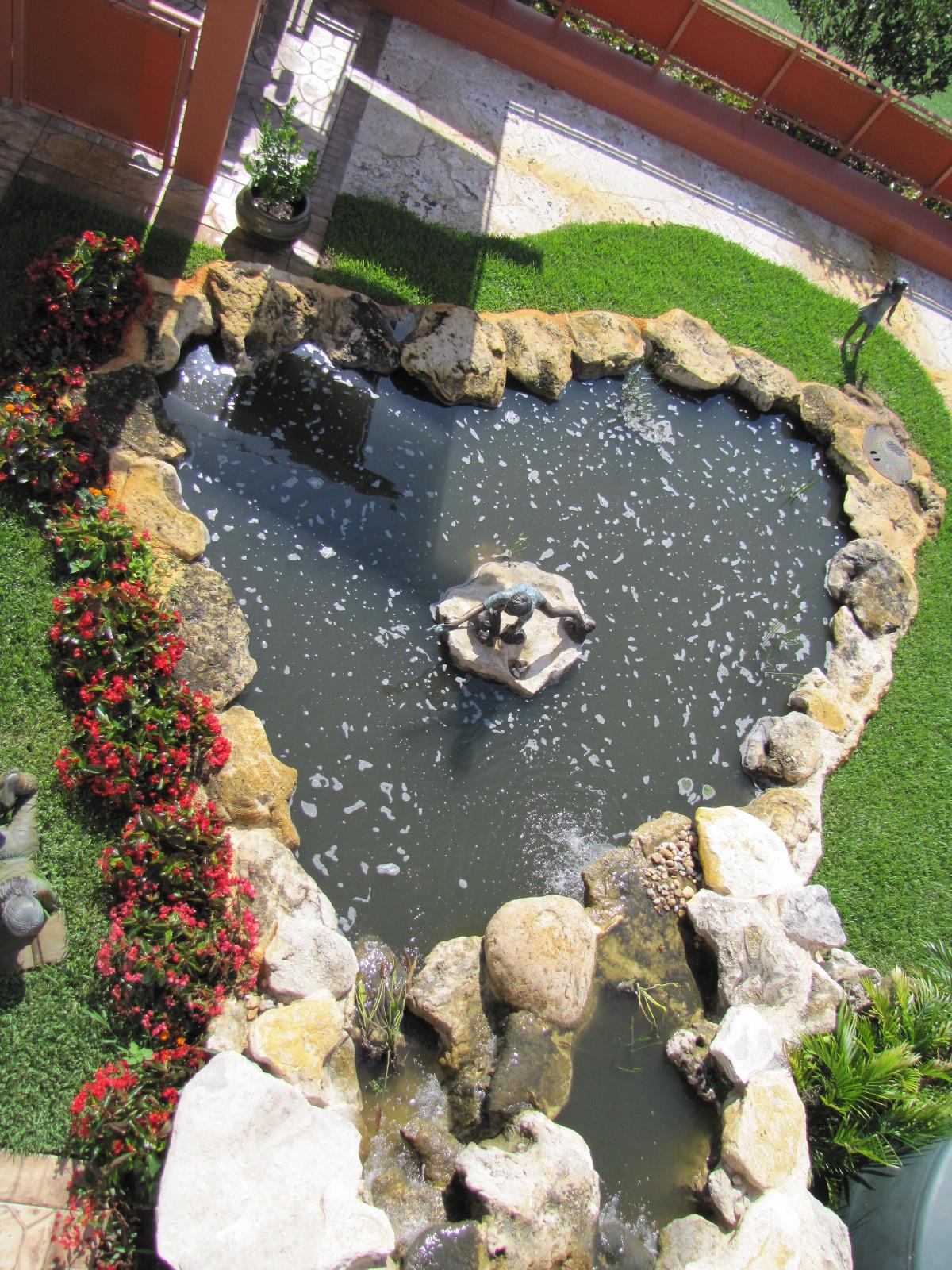turtle river montessori collected rainwater pond  bronze sculpture.jpg