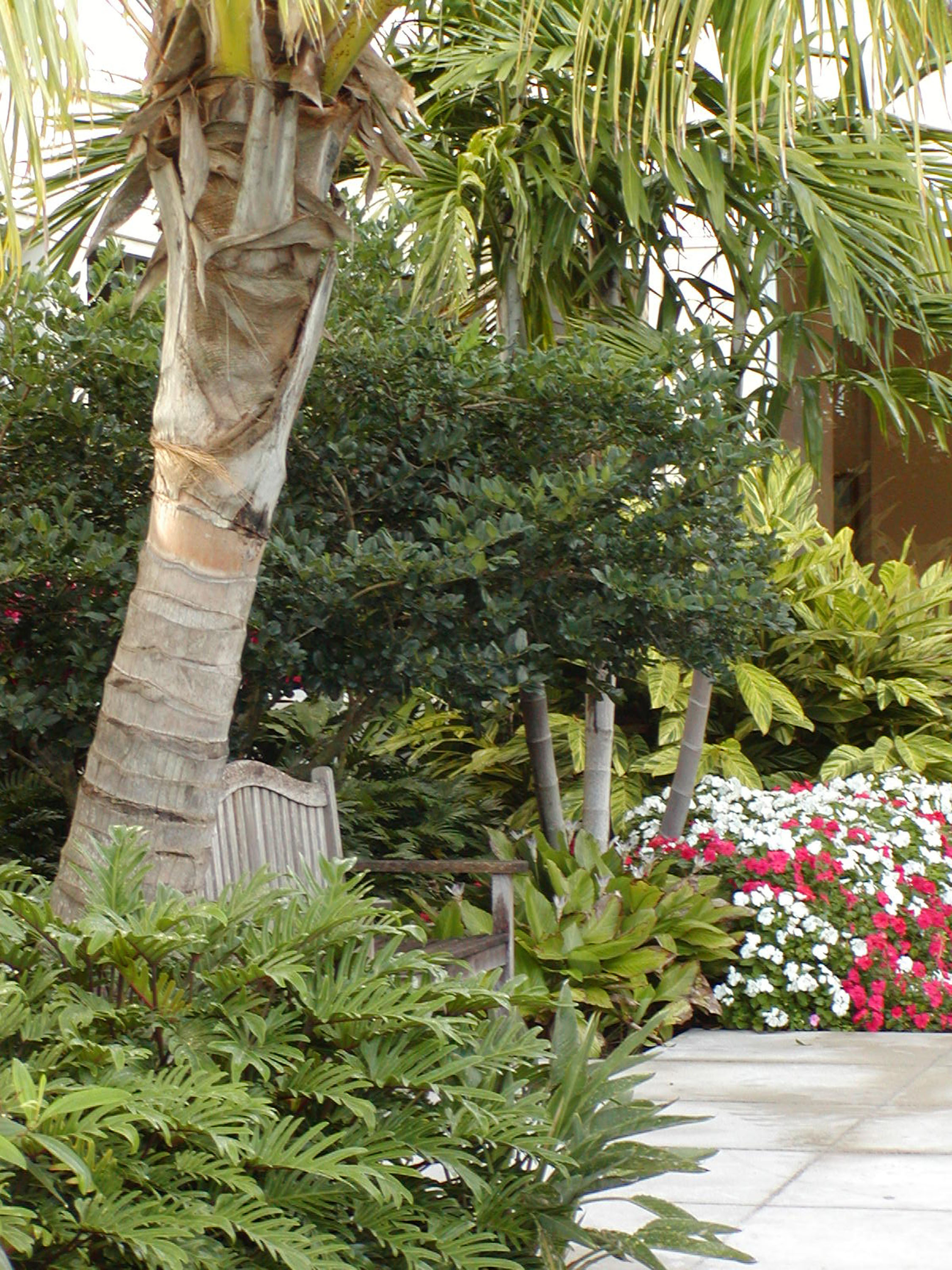 Gentile Holloway O'Mahoney Landscape Architects Planners Environmental Consultants Plantings.jpg