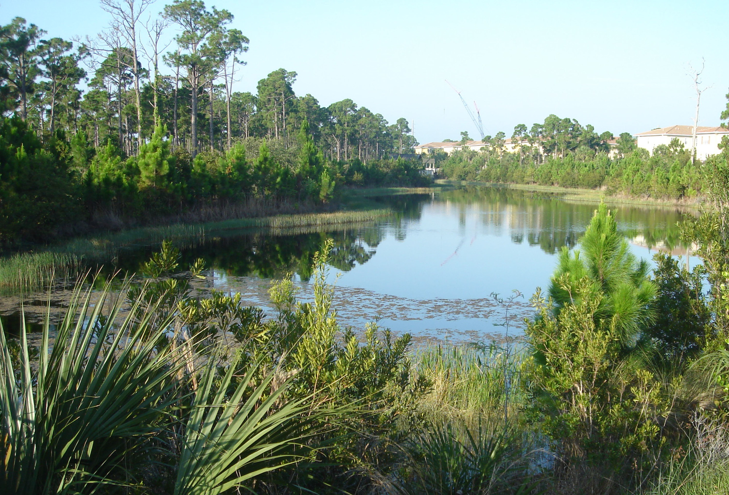 Abacoa Greenway Wetland with Mixed Use.jpg