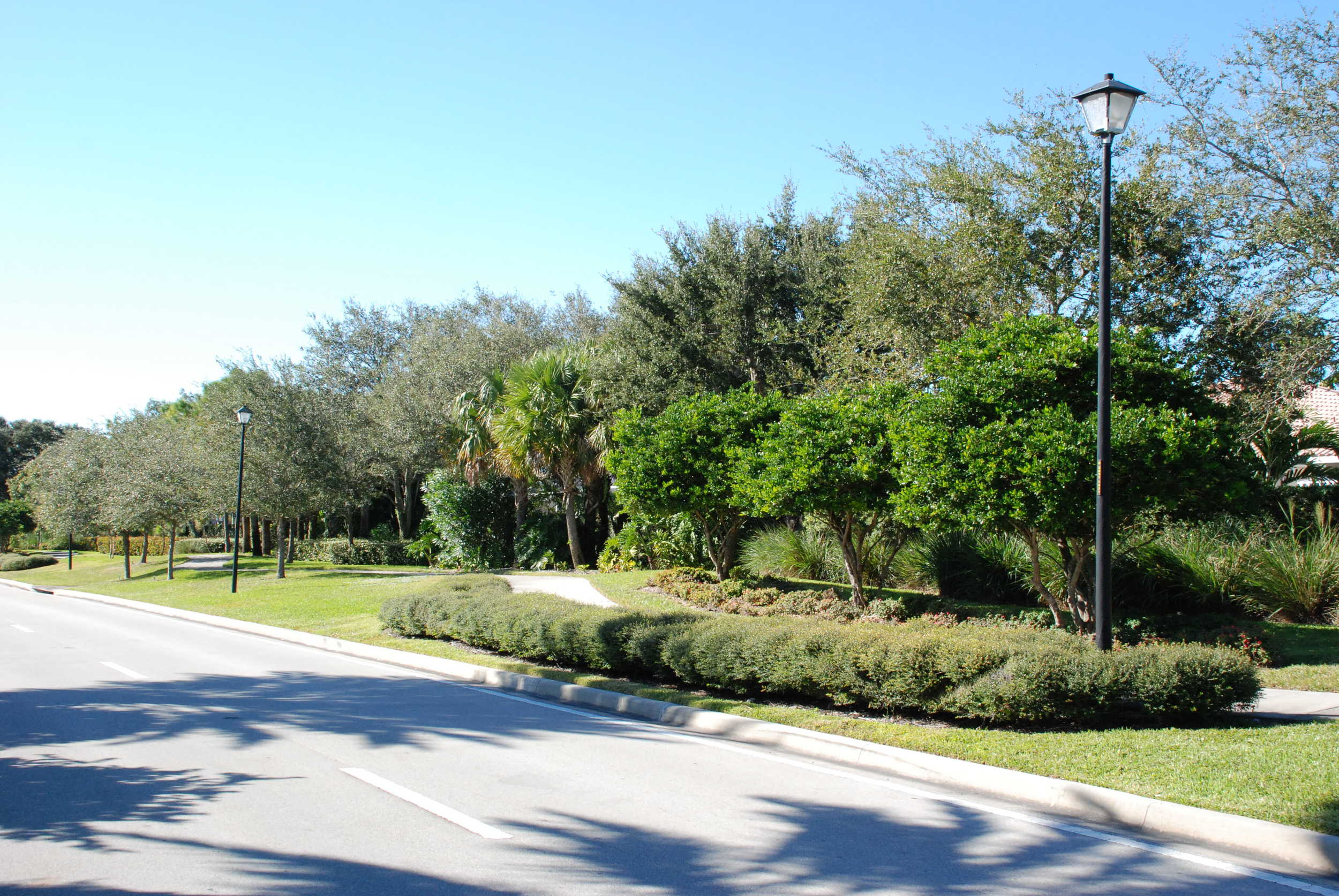 Burns Road Palm Beach Gardens Florida Roadway Landscaping.JPG
