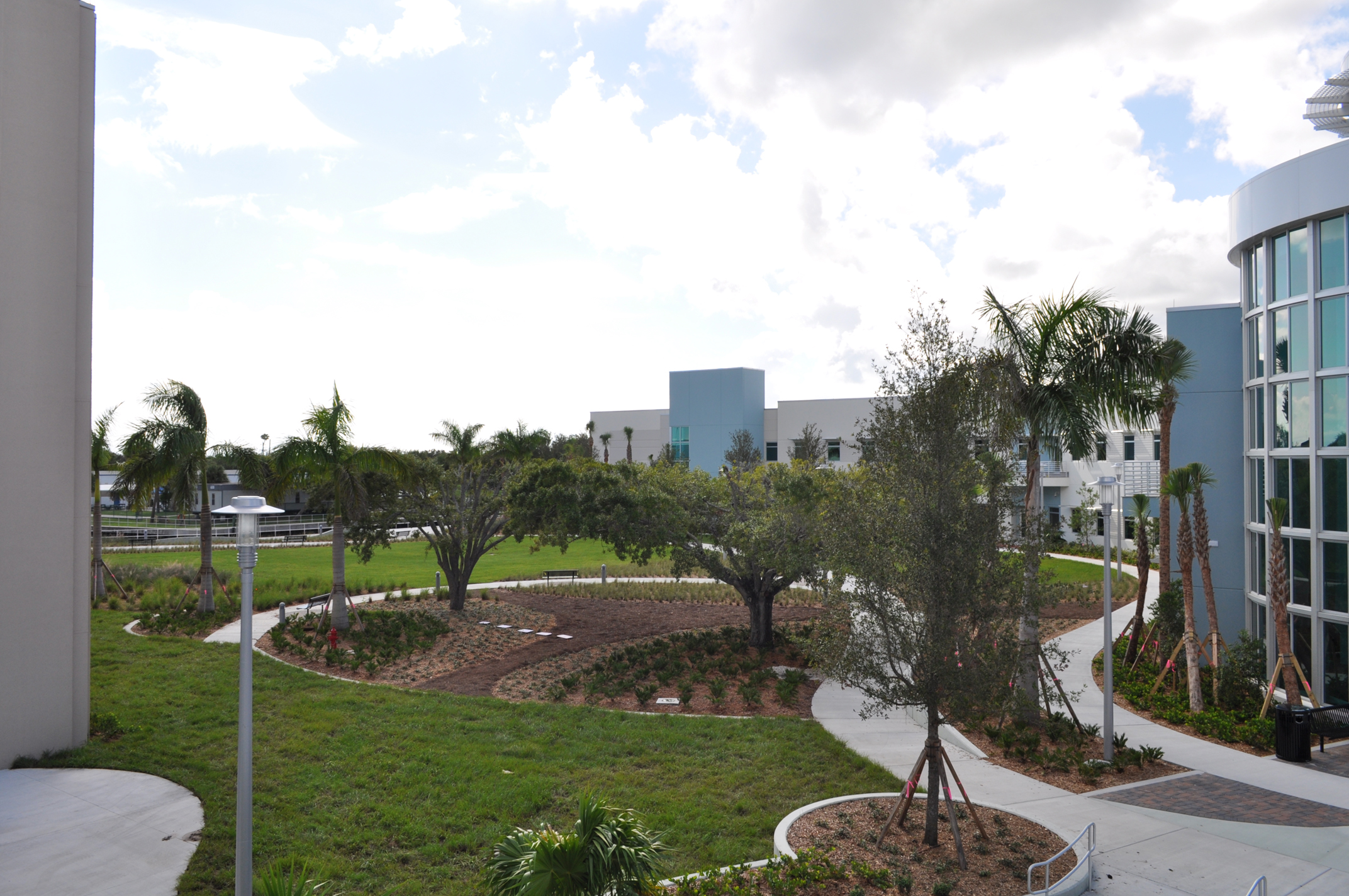 Harbor Branch Oceanographic Institute at FAU Research Laboratory II Courtyard Oak View.JPG