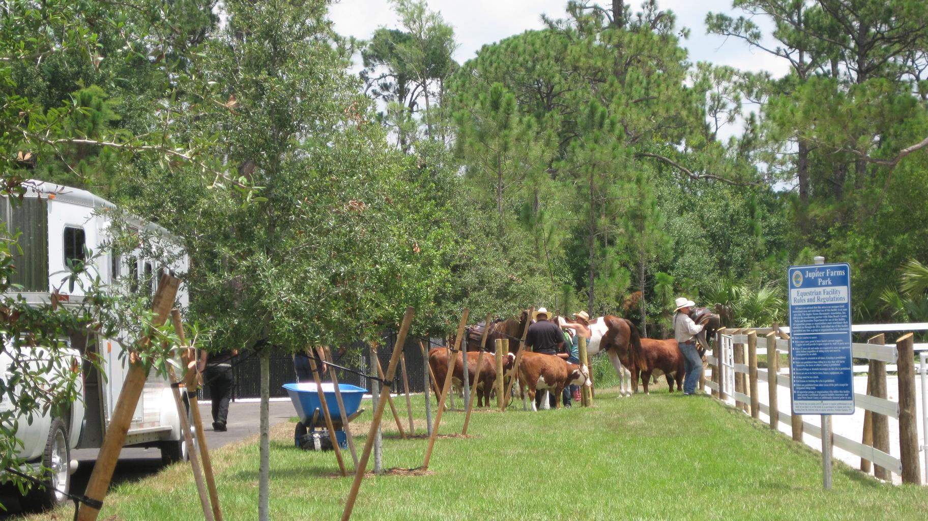 Palm Beach County Equestrain Facility Horse Enclosure.jpg