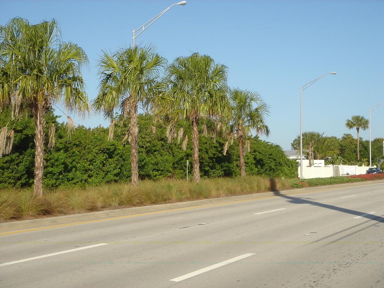 Kanner Highway Stuart Florida FDOT Native Median.JPG