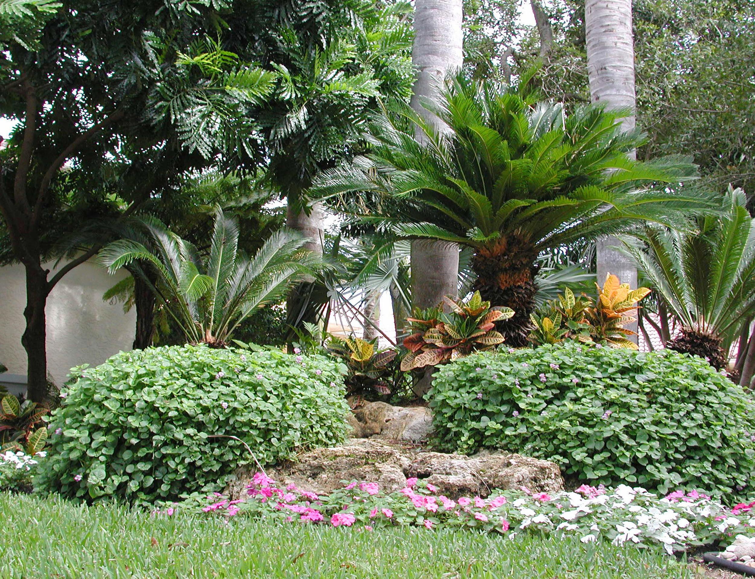 Admirals Cove Residence Annuals Florida Caprock.jpg